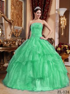 Apple Green Strapless Organza Beading Quinceanera Gown Dress in Fargo