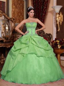 Cheap Green Strapless Organza Beading Quinceanera Gown Dress in Raleigh