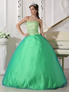 Simple Spring Green Floor-length Quinceanera Gown with Beading in Troy