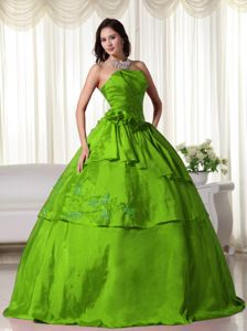 Strapless Green Floor-length Sweet 15 Dress with Embroidery and Flowers