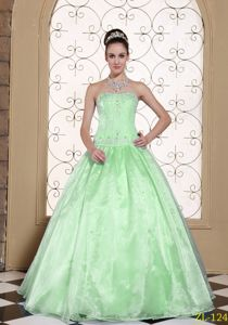 Elegant Apple Green Strapless Full-length Quince Dresses with Embroidery