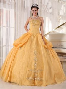Gold Floor-length Sweet 15 Dresses with Straps and Appliques in Burnsville