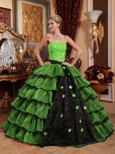 Multi-colored Strapless Floor-length Appliqued Quinceanera Dress in Patalillo