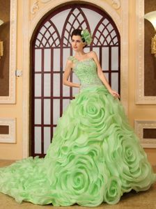 Beaded Green Quince Dress with Rolling Flowers and Chapel Train in Soacha