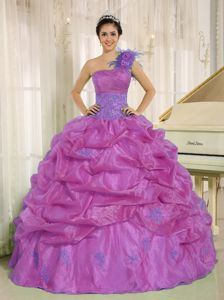 Lavender One Shoulder Quince Dress with Embroidery and Pick-ups in Auburn