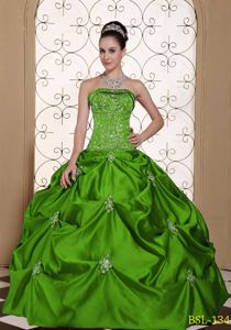 Cheap Green Strapless Embroidery and Pick Ups Quinceanera Gown Dresses