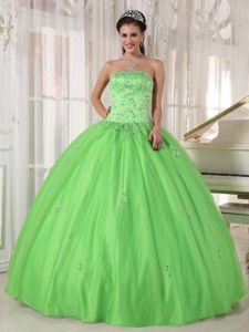 Floral Embroidery Spring Green Sweet Sixteen Quinceanera Dresses
