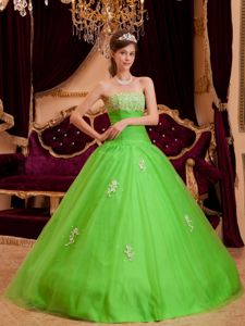 Spring Green Appliques and Diamonds Sweet Sixteen Dresses in Seattle