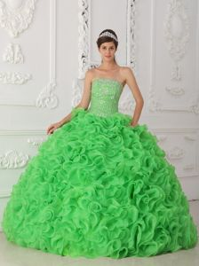 Strapless Beaded Organza Green Quinceanera Dress with Rolling Flowers in Berwyn
