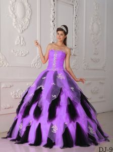 Princess Lilac and Black Strapless Appliques Quinceanera Dress in Providence RI