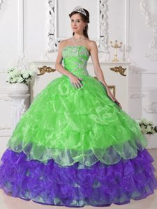 Brand New Colorful Strapless Appliques Quinceanera Dress in Bellingham 2013