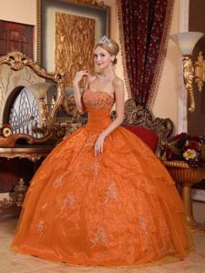 2013 Hot Sale Strapless Organza Appliques Quinceanera Dress in Orange