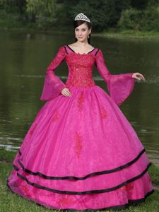 Appliqued Fuchsia V-neck Quinceanera Dress with Long Sleeves in Ibague