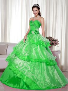 Sweetheart Beaded Hand Flowery Quince Dress in Spring Green in Soacha