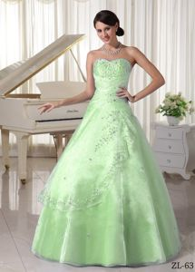 Organza Appliqued Sweetheart Quinceanera Dress with Beading in Charleston