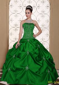 Embroidered Strapless Modest Quinceanera Dress with Pick-ups in Appleton