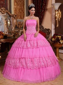 Pink Ball Gown Strapless Lace Quinceanera Gown Dresses in Bolivia
