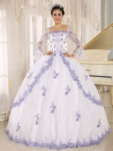 Square Long Sleeves White Full-length Quinceanera Dress with Embroidery