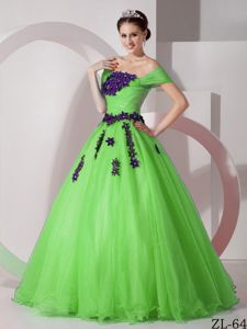 Off The Shoulder Spring Green Floor-length Quinces Dresses with Appliques