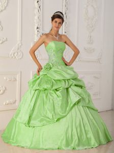 Spring Green A-Line Strapless Taffeta Beading Quinceanera Dress in Rochester