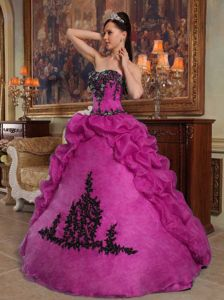 Fuchsia A-line Strapless Appliques and Pick-ups Quinceanera Dress in Amherst