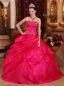 Coral Red Ball Gown Strapless Organza Sweet Sixteen Dresses with Appliques