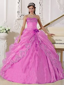 Pink Ball Gown Strapless Organza Embroidery with Beading Quinceanera Dress