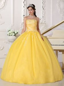 Strapless Gold Tulle Sweet formal Sweet 15 Dress with Appliques in Evergreen