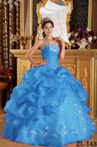 Ruche Pick Ups and Embroidery Blue Dress For Quinceanera in Anacortes