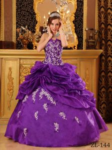Floral Embroidery and Pick Ups Decorated Quinces Dresses in Carnation