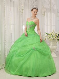 Beaded Appliques Decorated Spring Green Sweet Sixteen Quinceanera Dress