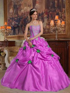 Pick Ups and Handle Flowers Puffy Quinceaneras Dress near Des Moines