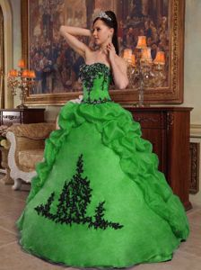 Pick Ups and Appliques Decorated Green Quinceanera Gown in Bothell