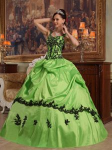 Straps Green Quinceanera Dresses with Appliques and Pick Ups for Woman