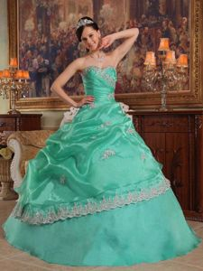 Discounted Apple Green Sweetheart Appliques Dress for Quince in Sterling VA