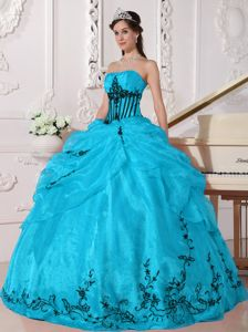 Strapless Aqua Blue Organza Quinceanera Dress with Appliques 2013 on Sale