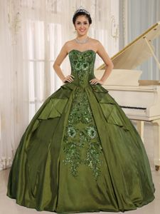 Embroidered Sweetheart Quinceanera Dress in Olive Green in Tocopilla