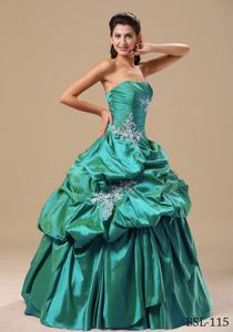 Appliques Decorate Bodice Strapless Pick-ups Sweet Sixteen Dresses in Dedham