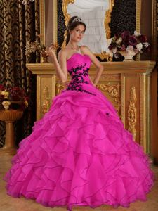 Hot Pink Sweetheart Organza Appliqued Quince Dress with Ruffles