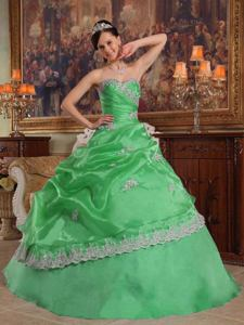 Sweetheart Appliqued Organza Quinceanera Dress in Green in Castelar Argentina