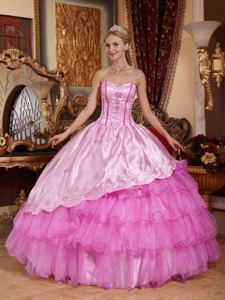 Pink Floor-length Quinceanera Dresses with Embroidery in Caseros Argentina