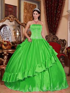 Spring Green Strapless Quinceanera Dress with Embroidery in San Juan Argentina