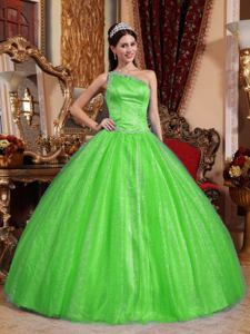 One Shoulder Floor-length Beaded Quinceanera Dresses in Green in Venado Tuerto