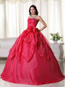 Red Strapless Organza Dresses For Quinceanera with Appliques in Ituzaingo