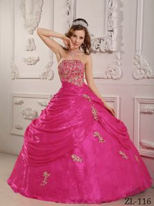 Hot Pink Quinceaneras Dress with Appliques and Pick Ups in Wheeling