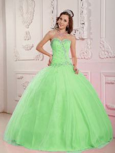 Spring Green Beaded Appliques Puffy Dress for Quince near Sedro-Woolley