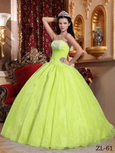 Discount Yellow Green Strapless Organza with Appliques Quinceanera Dress