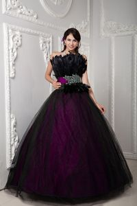 Black and Fuchsia Strapless Long Quinceanera Gown with Feathers in Elgin
