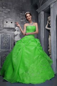 New Green Strapless Beaded Long Quinceanera Gown Dress with Pick-ups