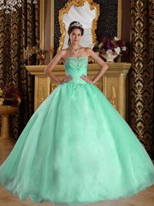 Ruched Apple Green Sweet 15 Quinceanera Dress with Hand Made Flowers